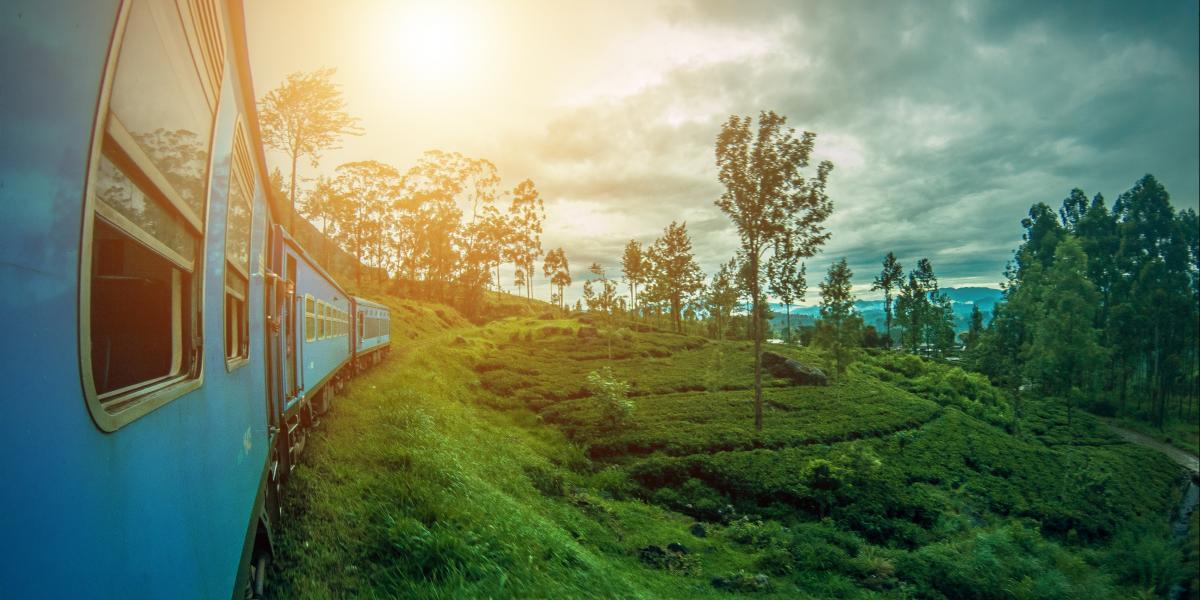 Gran Tour Sri lanka